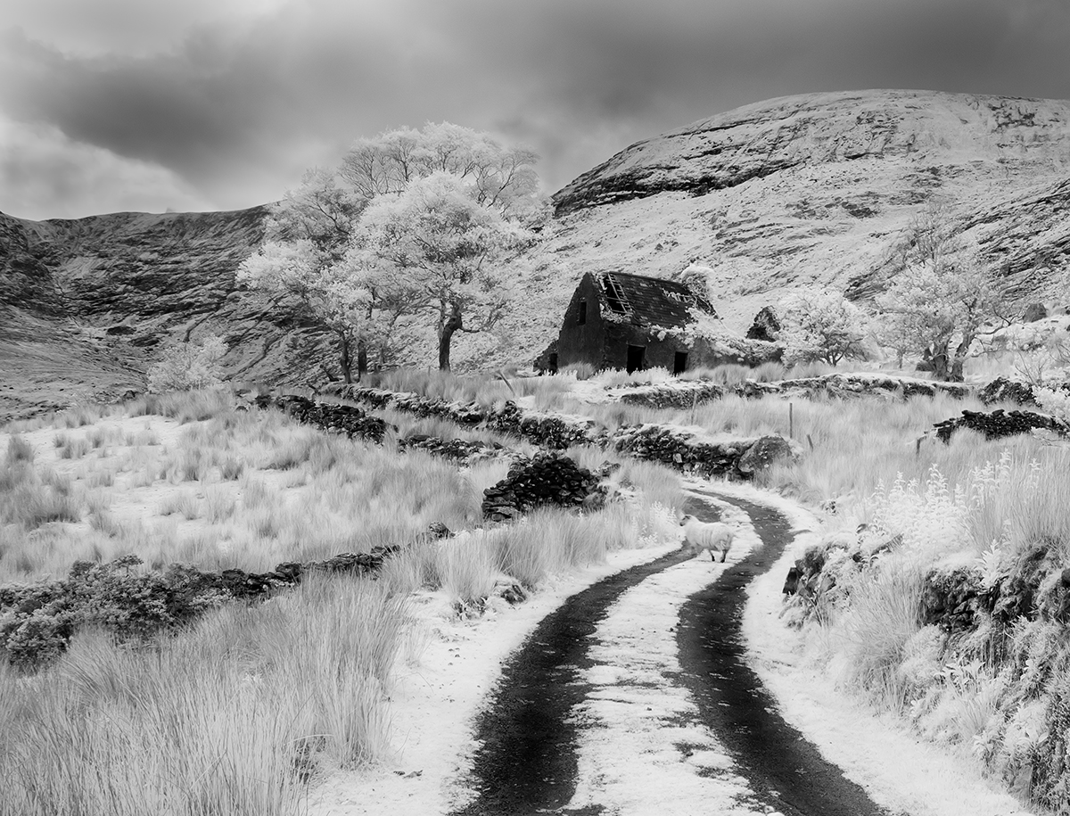 End of the road.  Black valley.  Infrared.