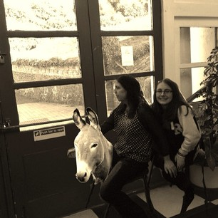 donkey team 15.jpg