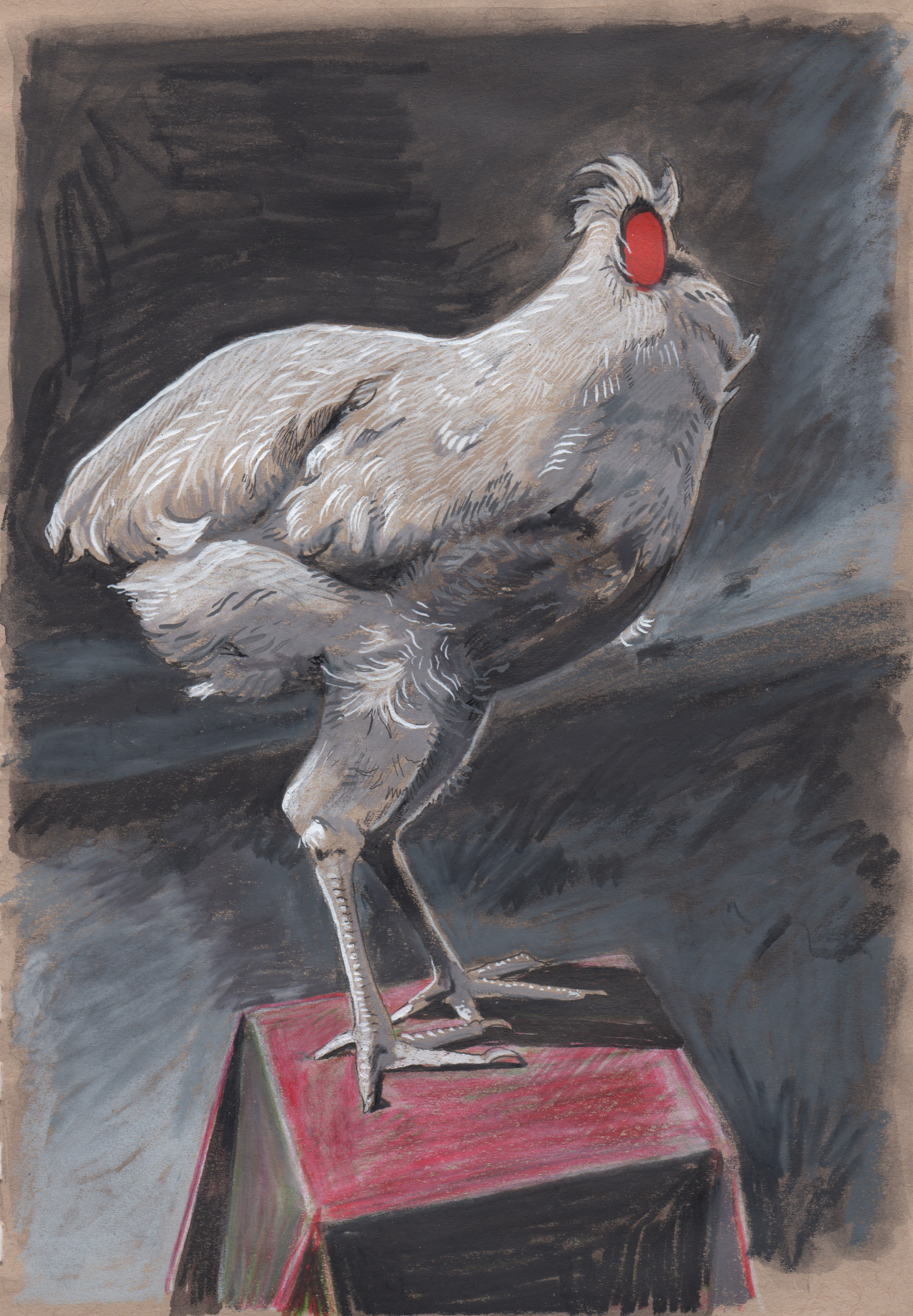 Headless Chicken,  2019 pencil on paper 6.9375 x 4.46875 inches