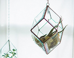 """DIY/ DIFY Terrariums: How To Be Green When Your Thumb Is Black"""