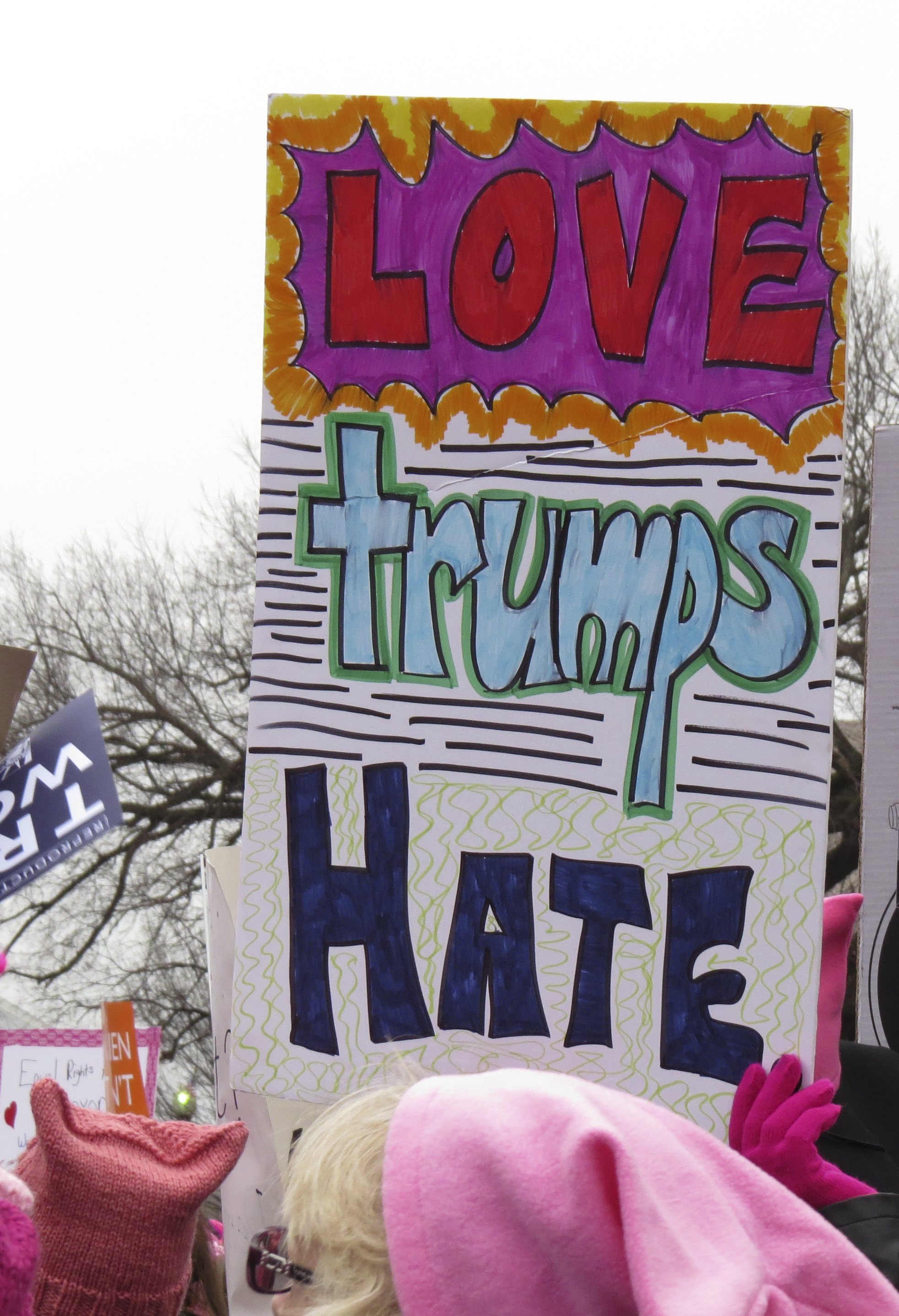 Protest Signs- Women's March on washington
