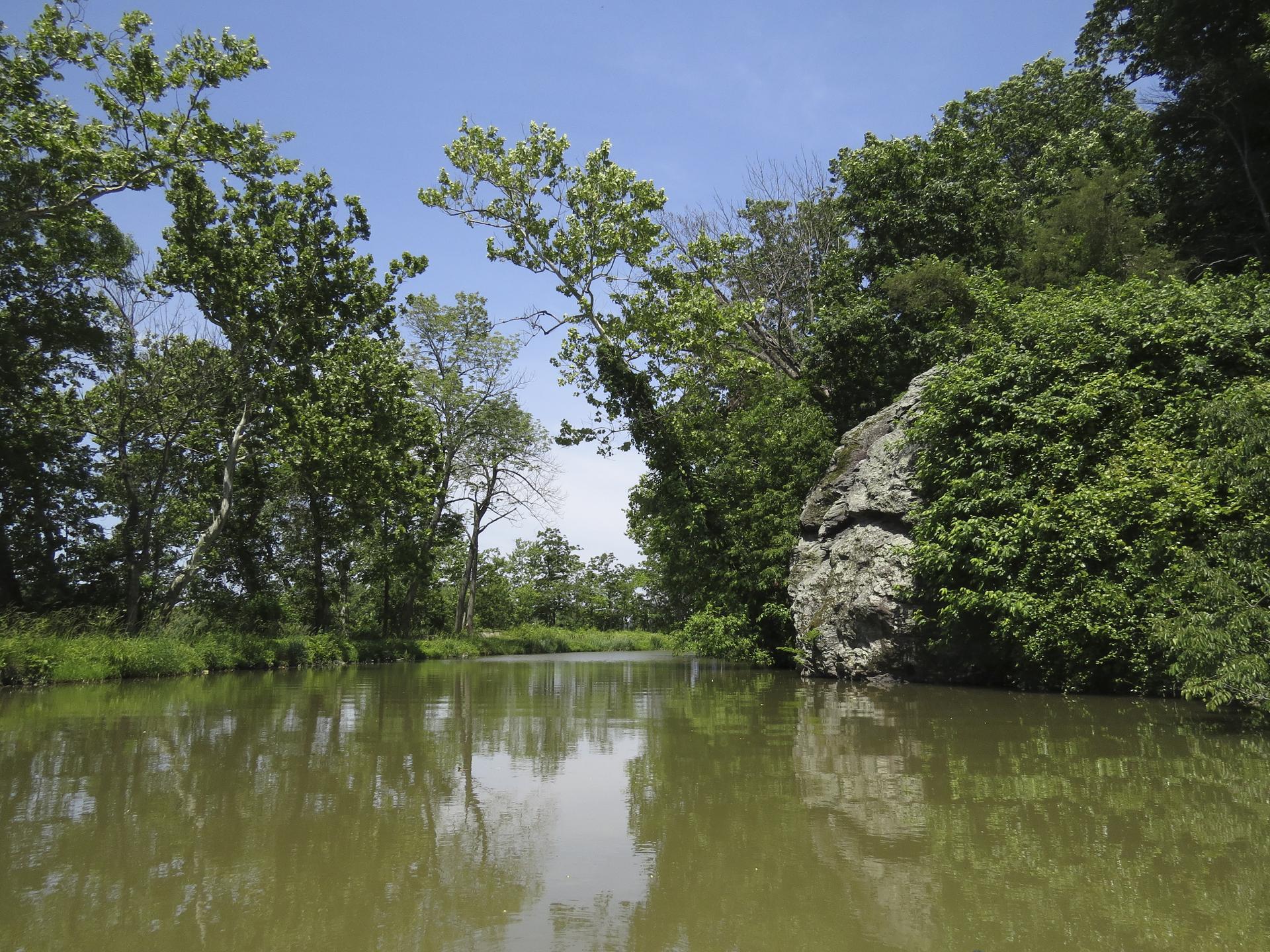 kayaking-maryland-water-nature-outdoors-c&o-canal-potomac-river