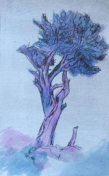 2009 3x5 Ink