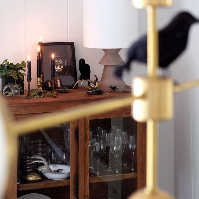Natural curiosities and black candles, plus who knew plants could up the spook factor?! 🖤 #818reno #themakeristaathome #halloweendecor #triplesevenhome #theheavywp