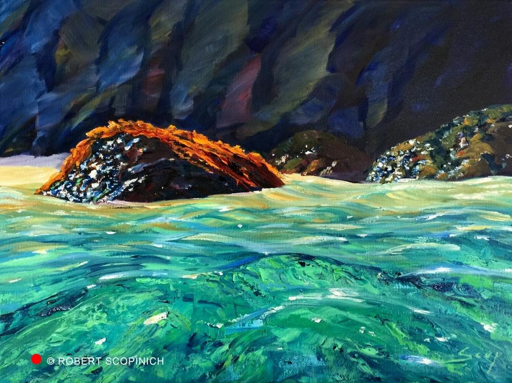 Kelp On The Rock