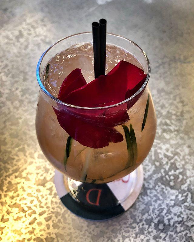 Fancy drinks at @rarebirdnash with @cfatke!