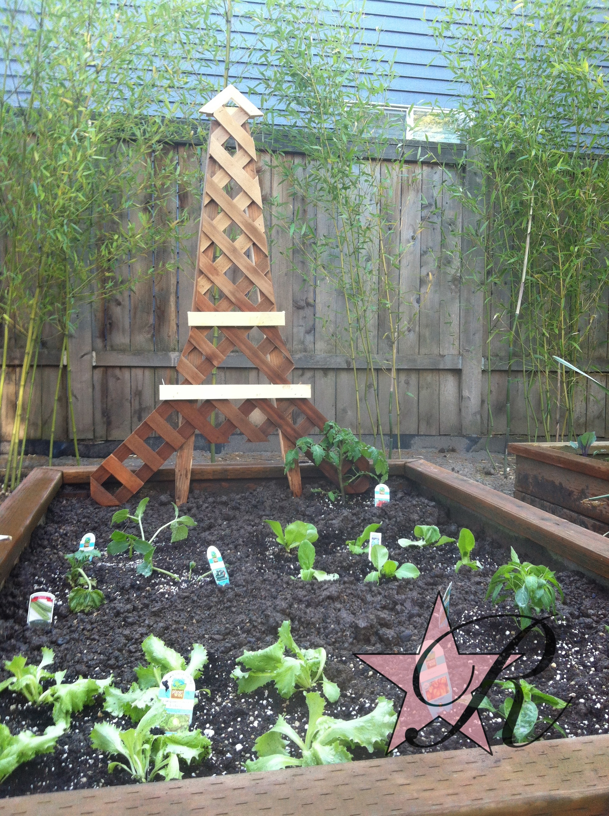 After adding lattice to an existing fence for added privacy and security, Rockstar Remodel used some of the leftover lattice to make a Eiffel Tower trellis for the tomato vines to climb.