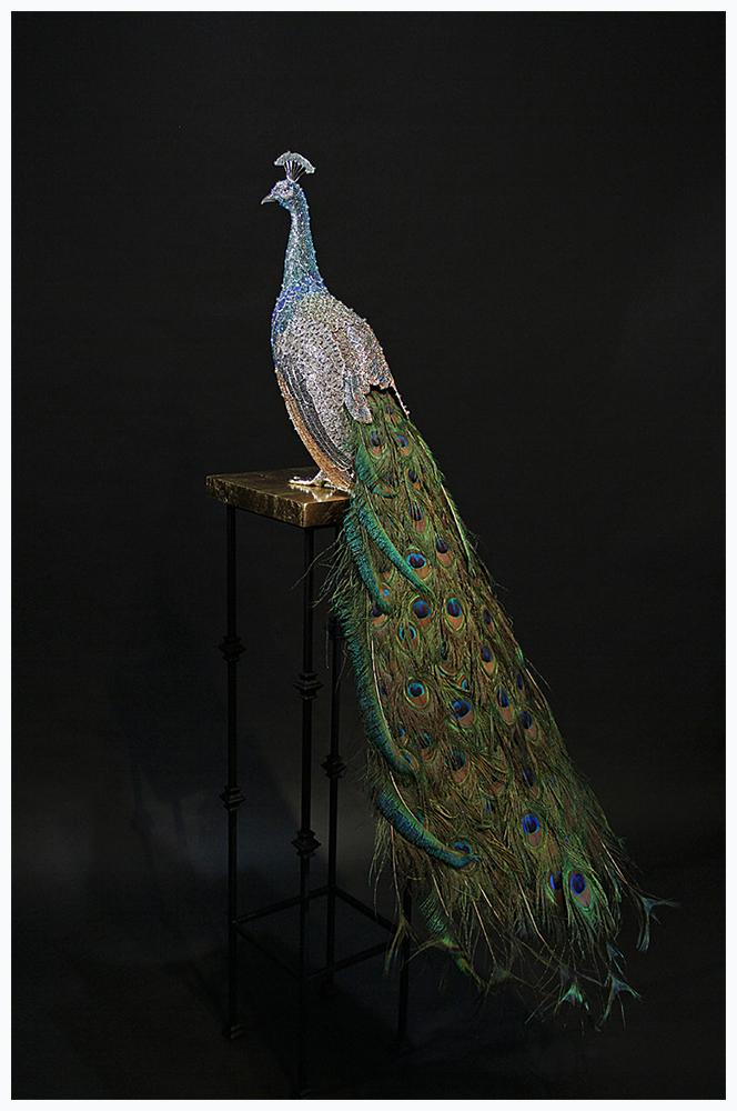 peacock homage to hera.jpg