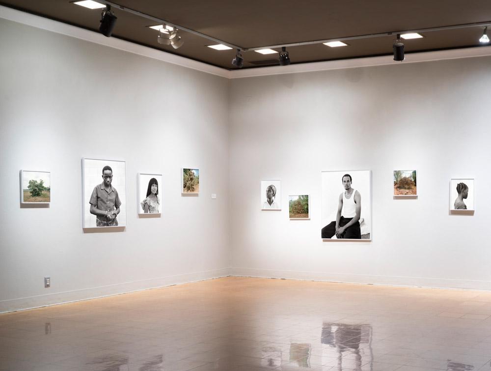 Magharibi installation view,  University of Arizona Museum of Art, 2017