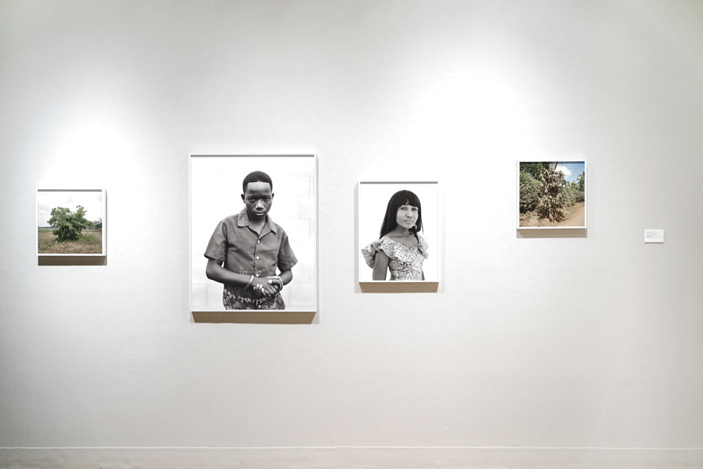 Installation View, University of Arizona Museum of Art