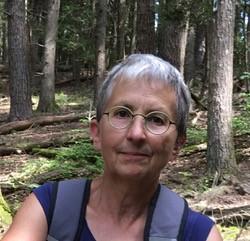NOVEMBER: Sue Blaustein