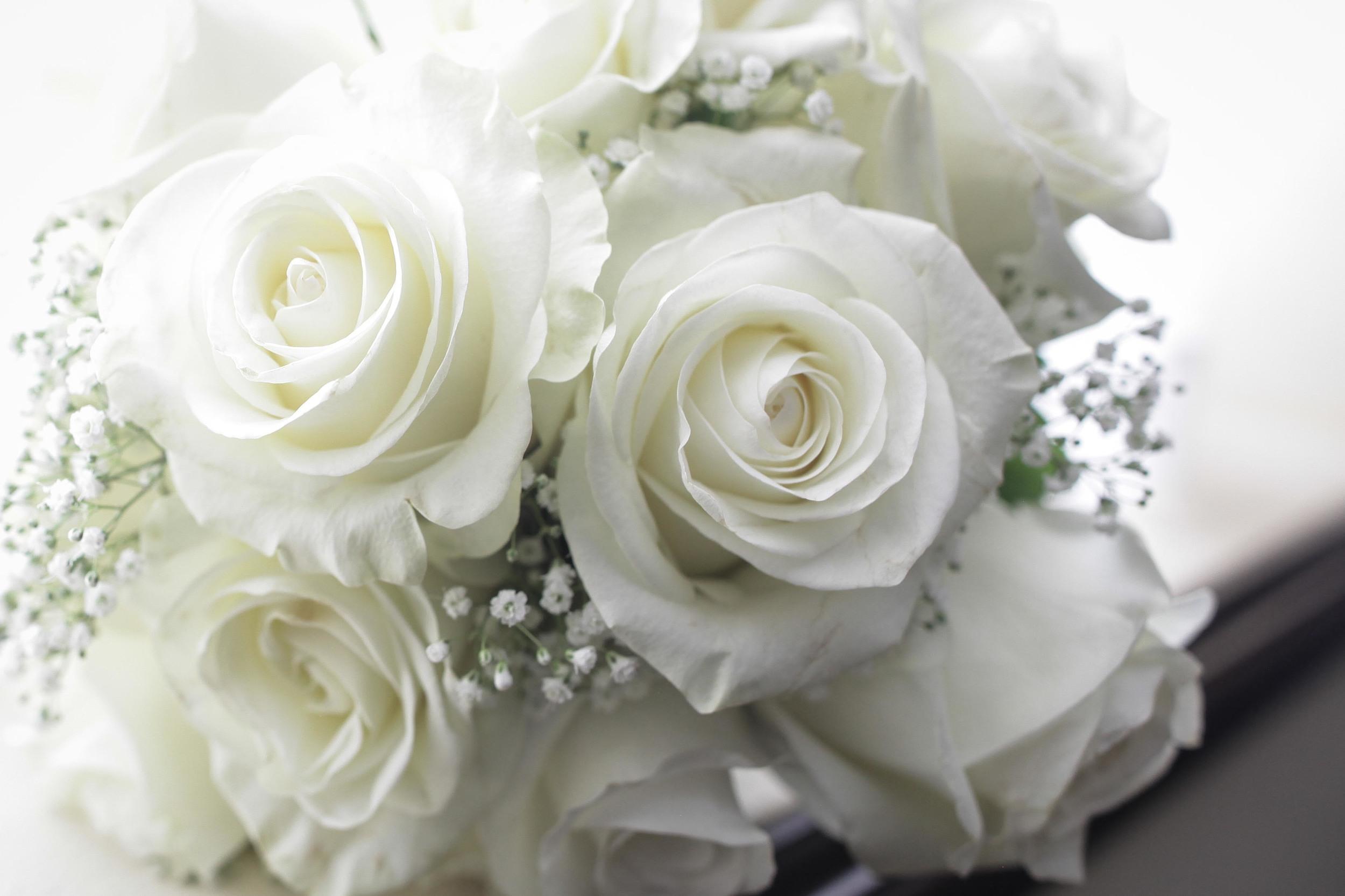 trish & ric wedding blog-2703.jpg