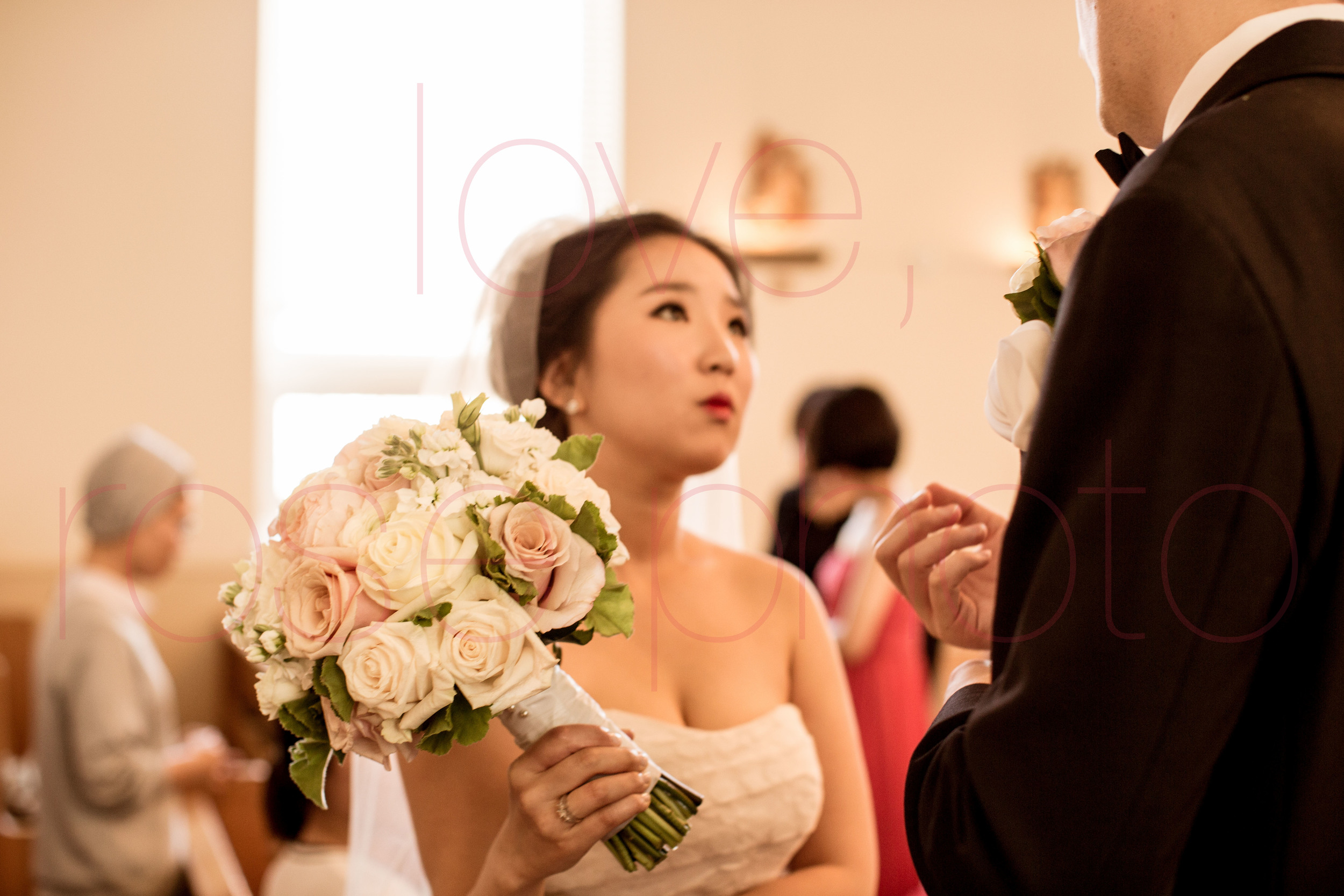 Hanvit + Lukus Lincoln Park Salvatore's Korean German Wedding portrait lifestyle photographer-009.jpg
