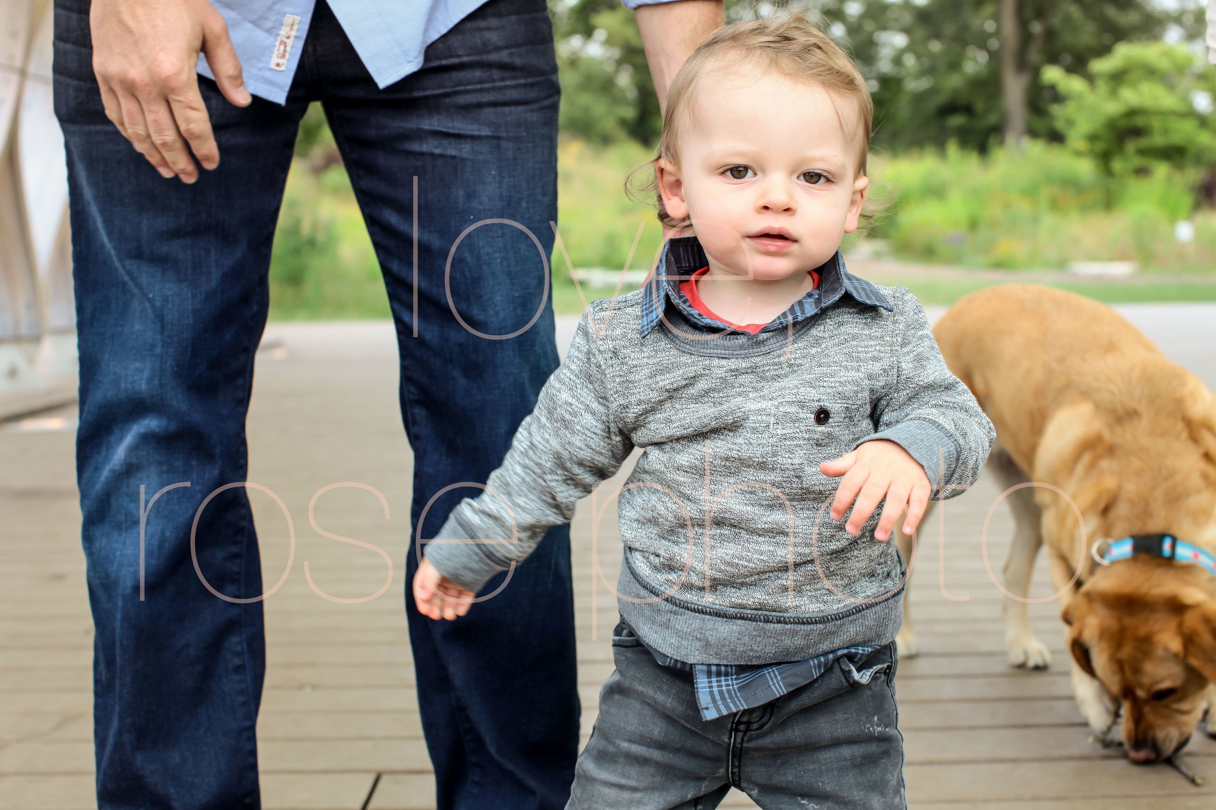 C Ensign chicago lifestyle photographic sessoin lincoln park kids portrait photographer gap kids-004.jpg