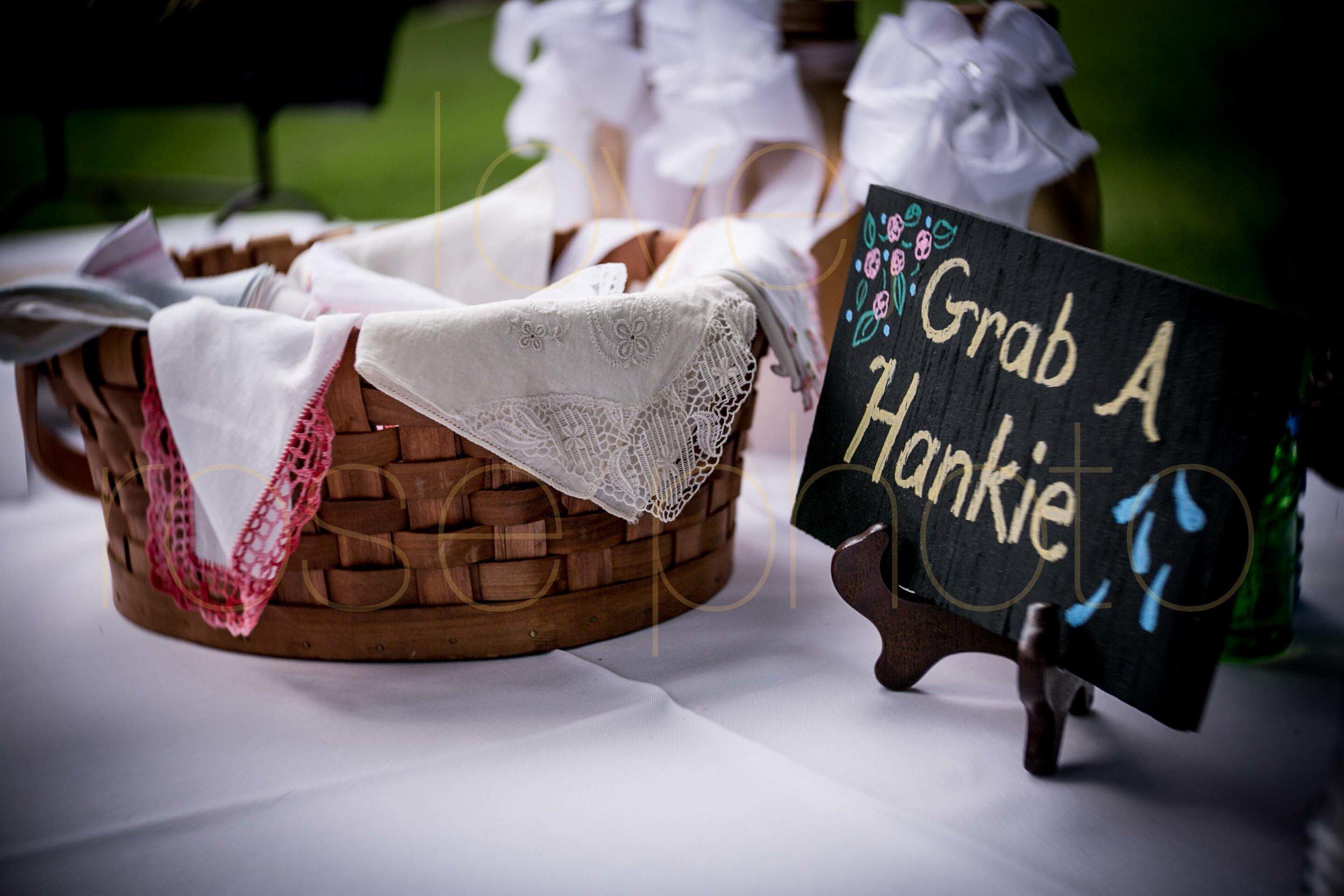 Rose Photo Asheville Wedding Photographer Nasheville Weddings Charleston Bride Chicago photojournalist weddings -27.jpg