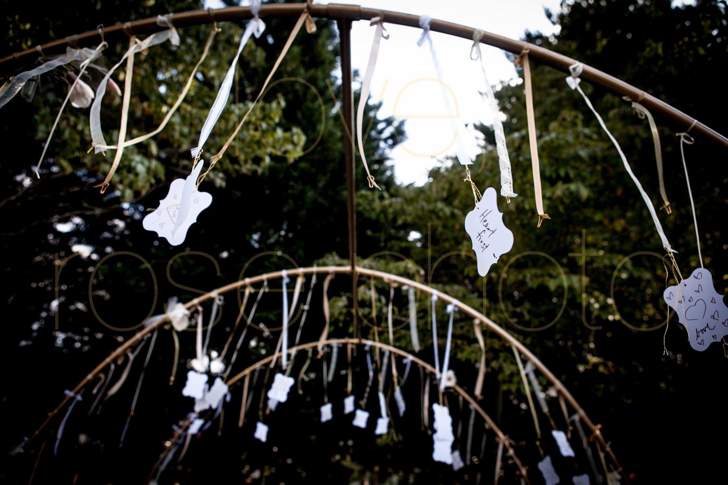 Rose Photo Asheville Wedding Photographer Nasheville Weddings Charleston Bride Chicago photojournalist weddings -32.jpg