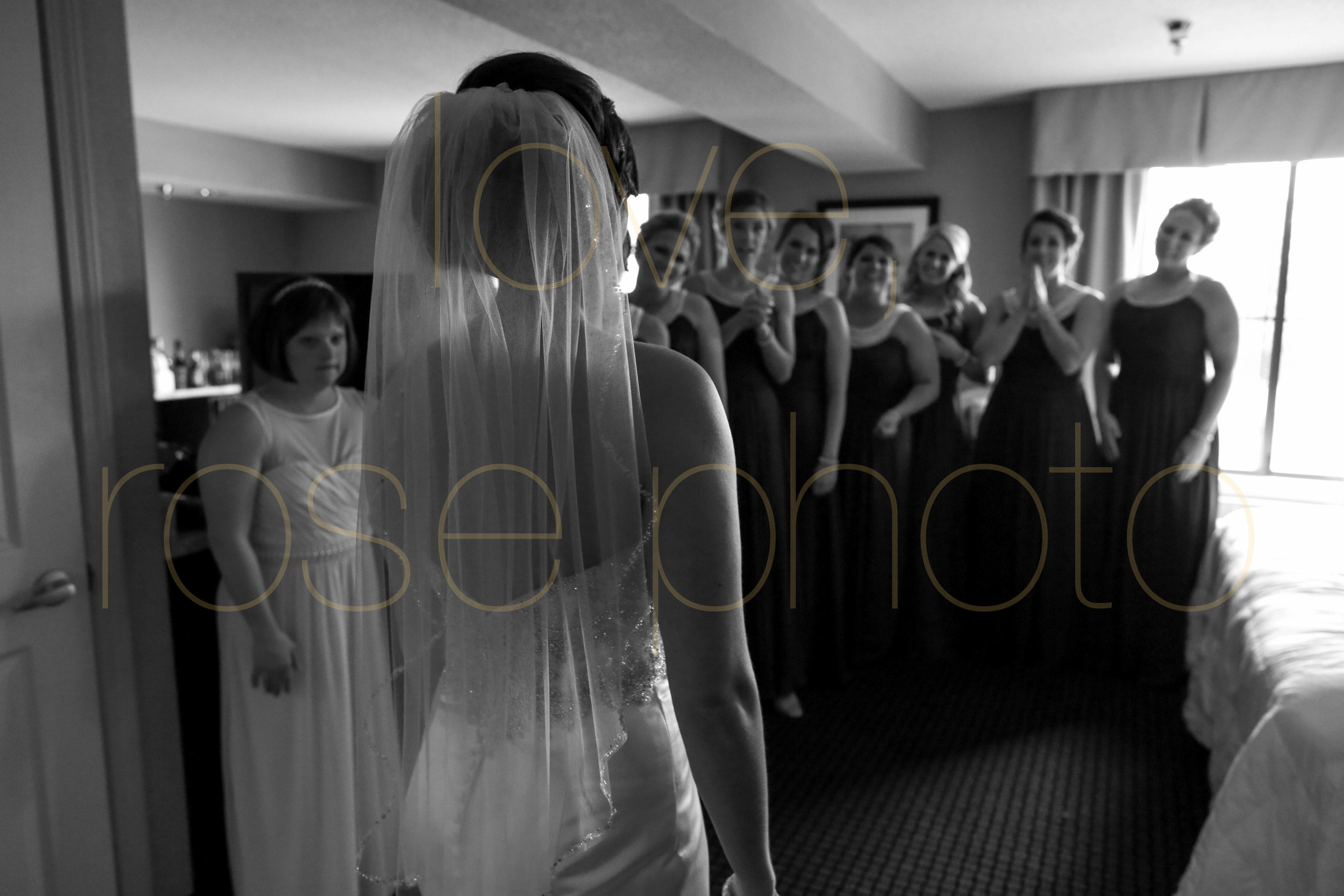 Alison + Mike Chicago Wedding Photographer Blog -8.jpg