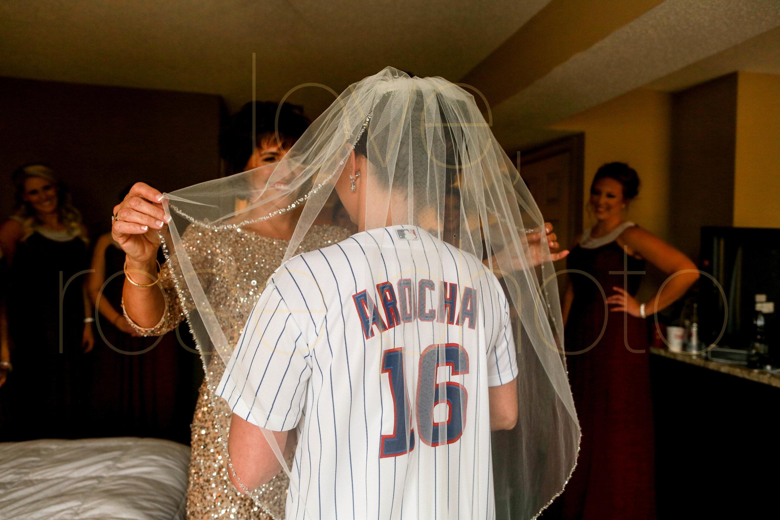 Alison + Mike Chicago Wedding Photographer Blog -10.jpg