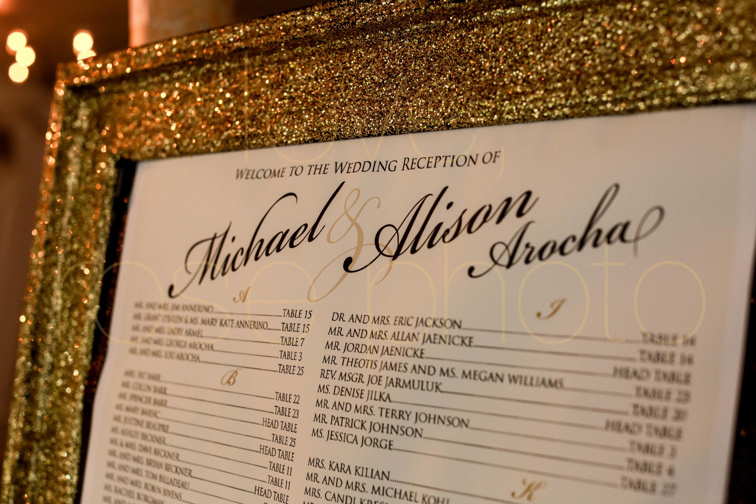 Alison + Mike Chicago Wedding Photographer Blog -11.jpg