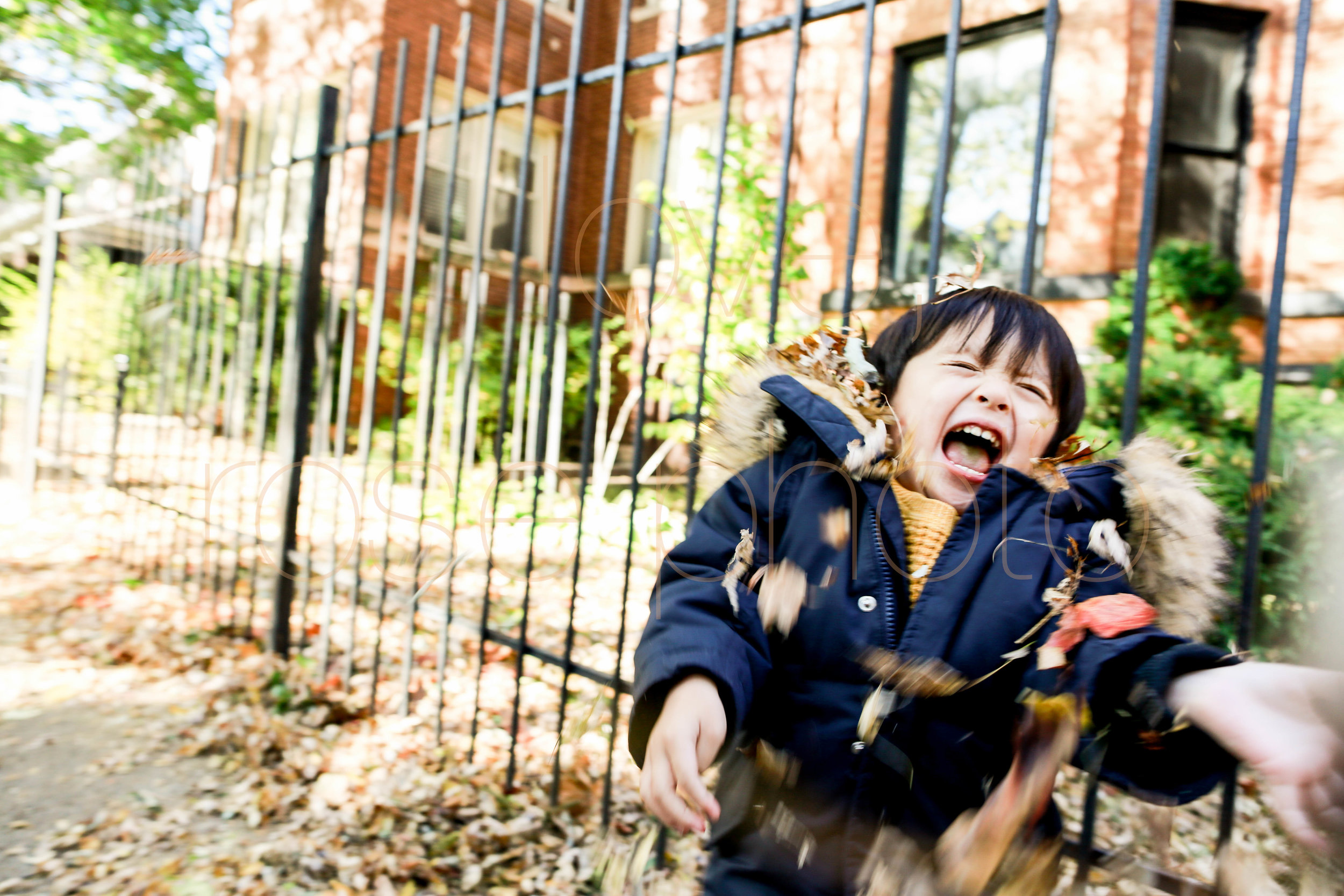 Chicago Best Family Photography Fall lifestyle session Rose Photo-11.jpg