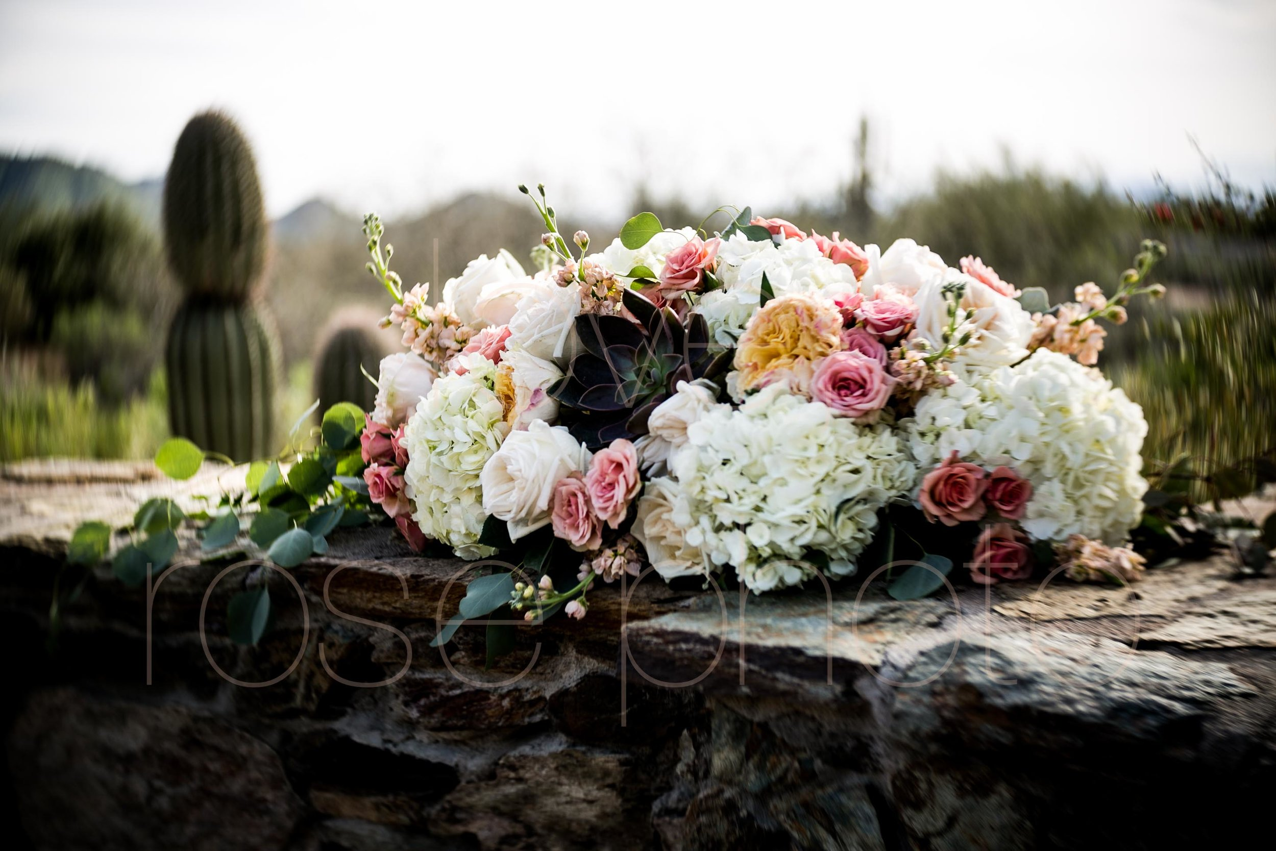 Scottsdale Sedona lifestyle best of destination wedding photographers-37.jpg