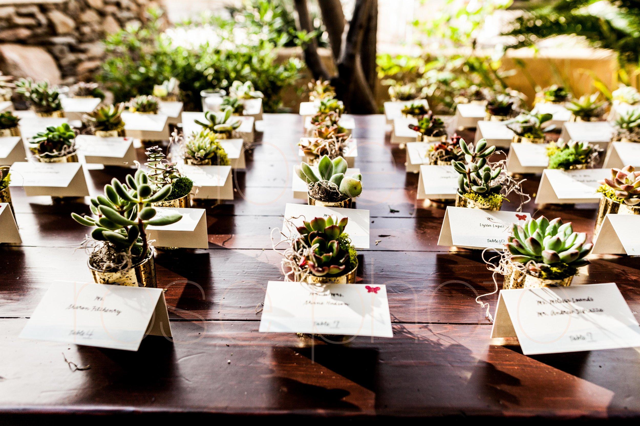 Scottsdale Sedona lifestyle best of destination wedding photographers-34.jpg