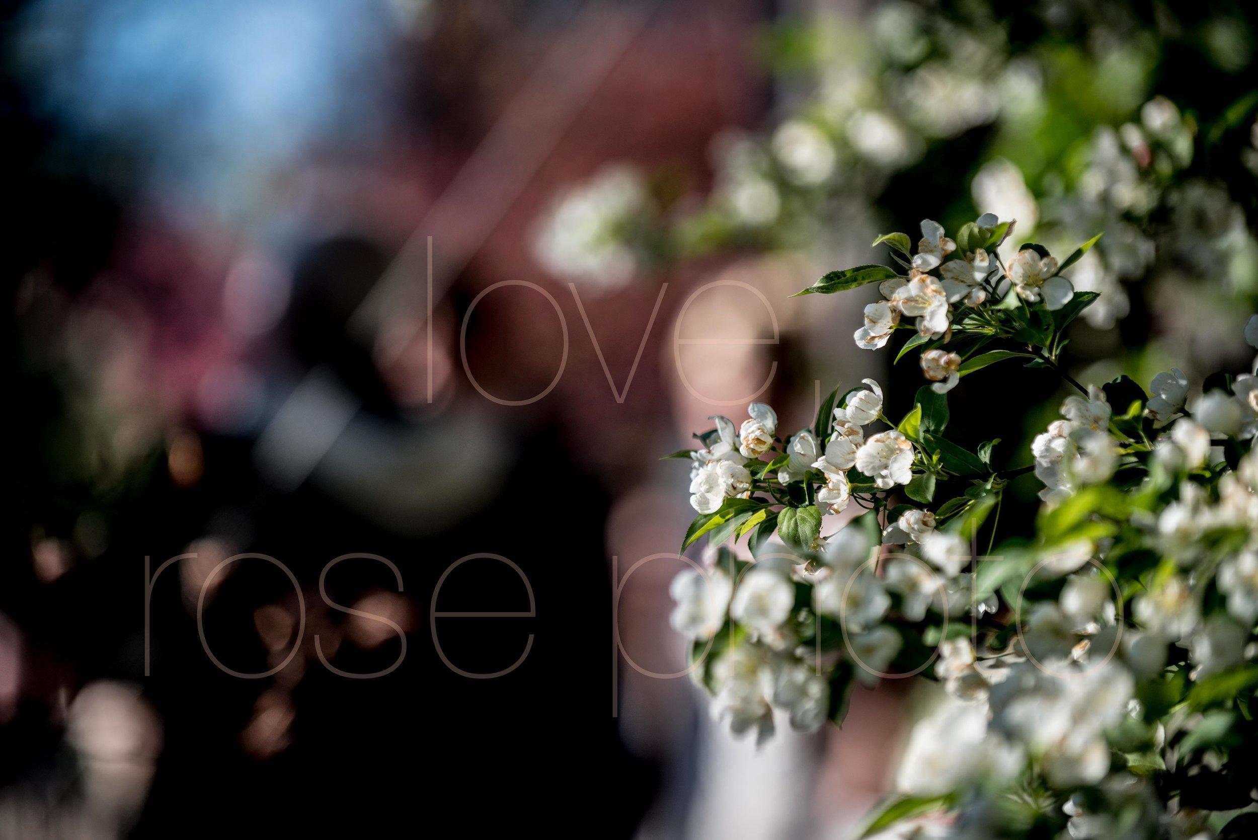 downtown spring wedding palmer house jewish galleria marchetii lazara gown by Rose Photo -32.jpg
