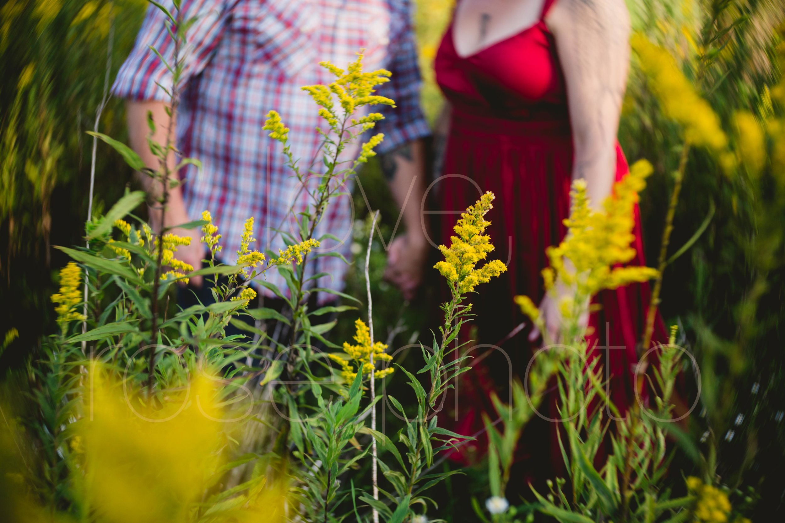 Jane Kramer Ashevegas Jason Sanford WNC Asheville wedding engagement shoot by Rose Photo-21.jpg