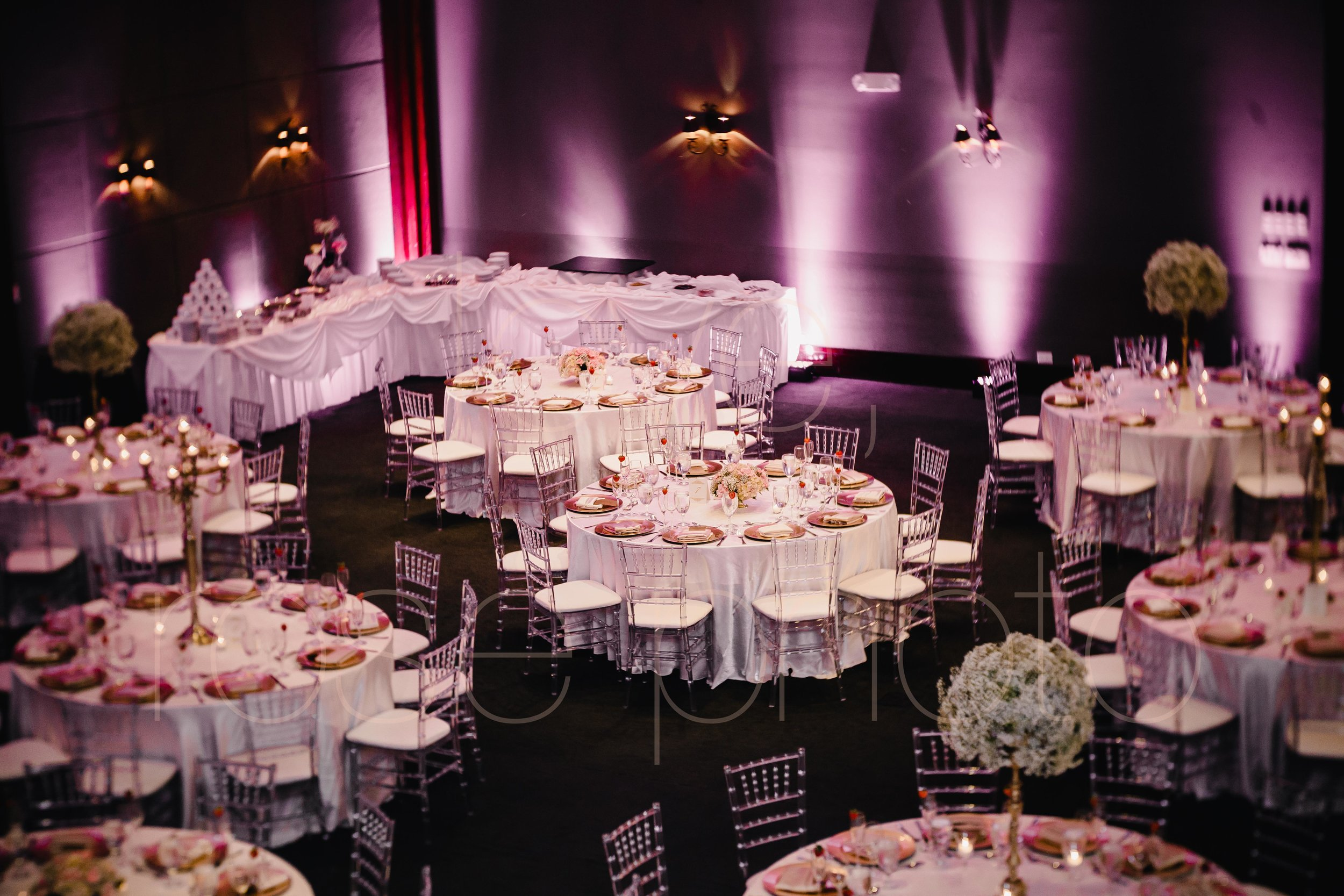 Chicago Indian Wedding best photography lifestyle wedding portrait luxury wedding-46.jpg