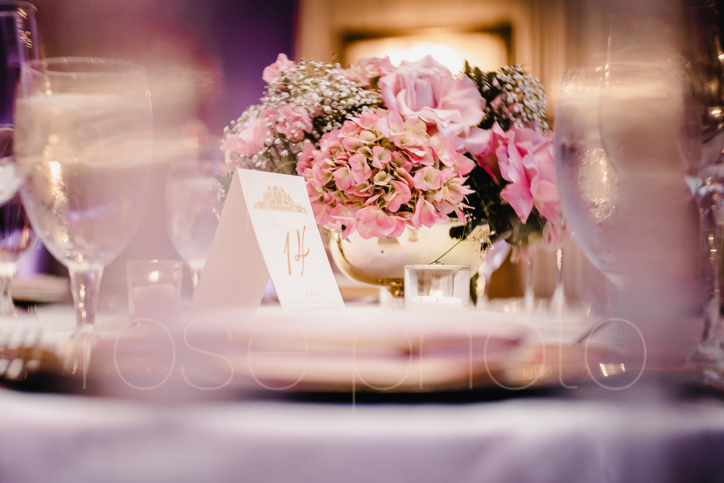 Chicago Indian Wedding best photography lifestyle wedding portrait luxury wedding-47.jpg