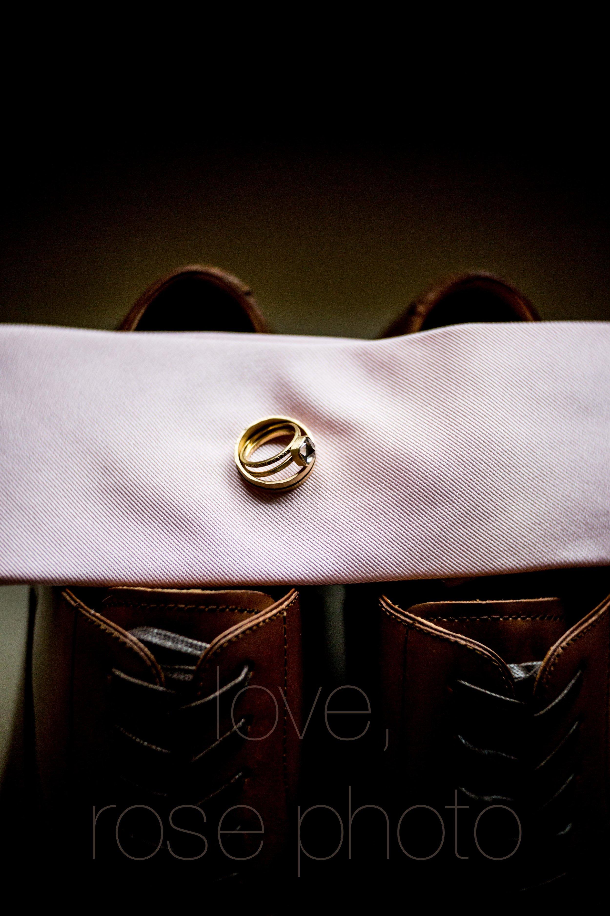 BRACEY rose photo chicago nyc wedding photographer asheville-6.jpg