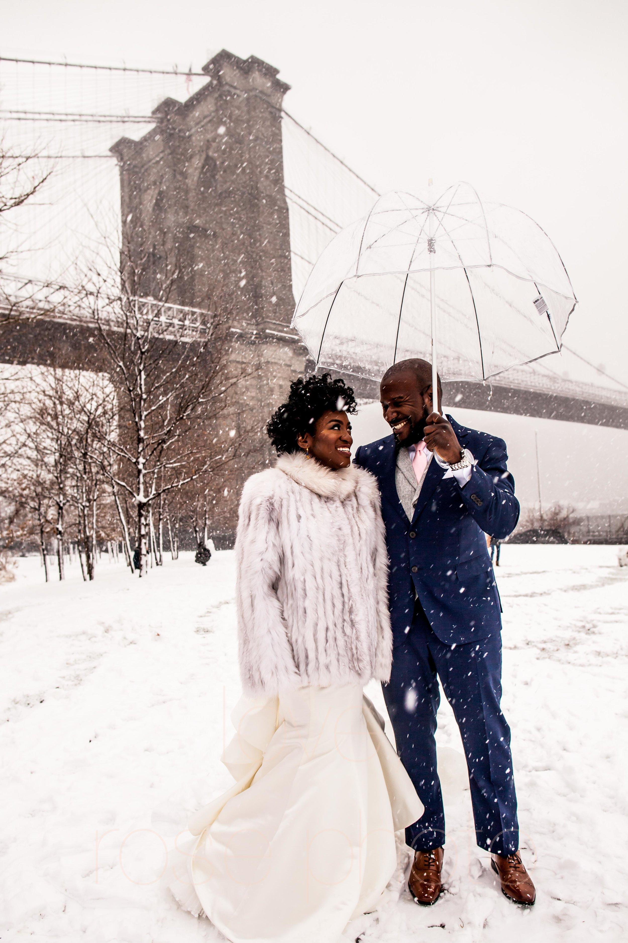 BRACEY rose photo chicago nyc wedding photographer asheville-43.jpg