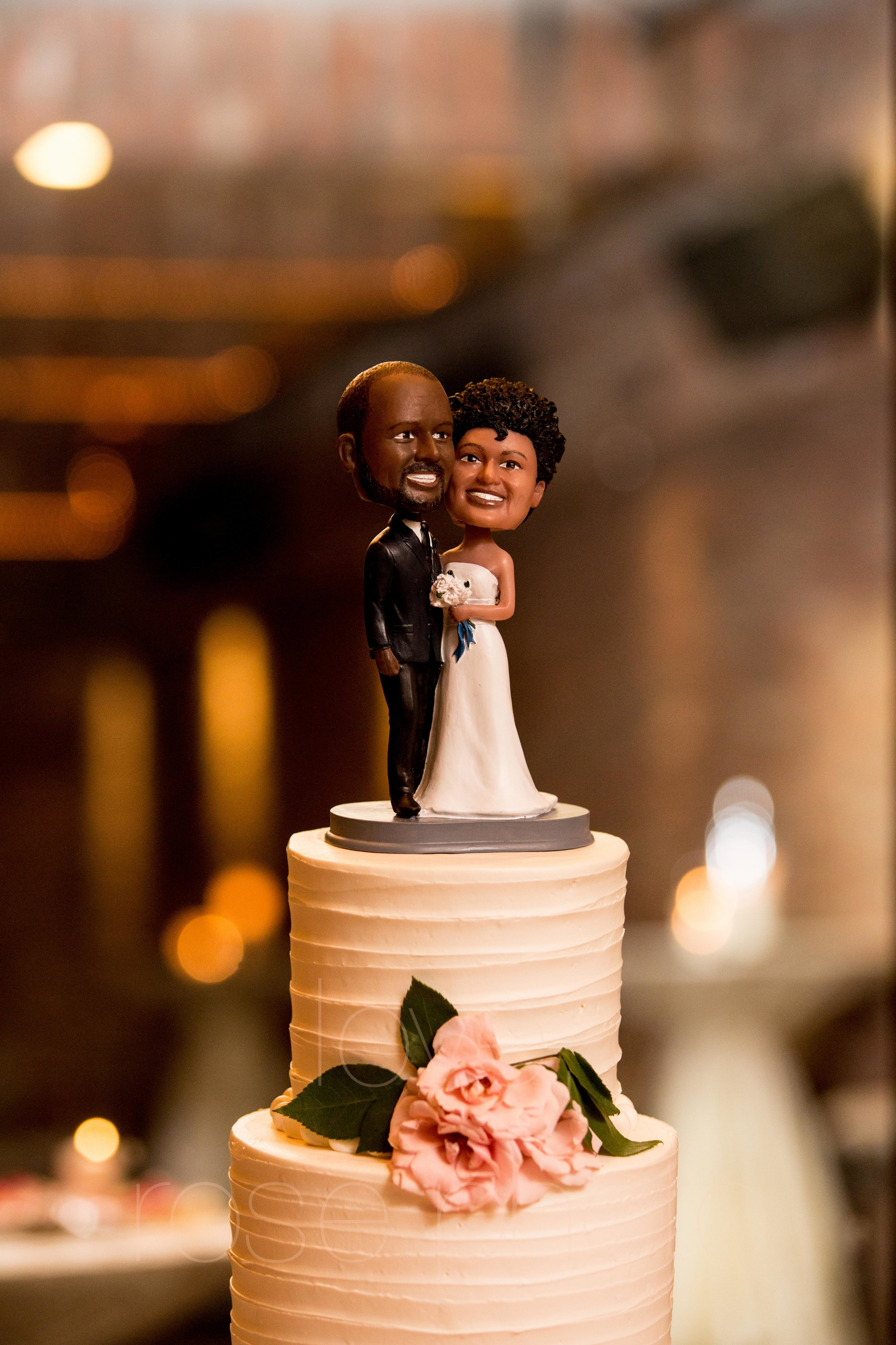 BRACEY rose photo chicago nyc wedding photographer asheville-61.jpg