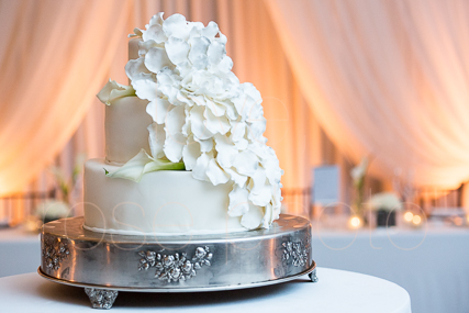 Hanan + Steve wedding highlights chicago wedding photographre waldorf astoria -51.jpg