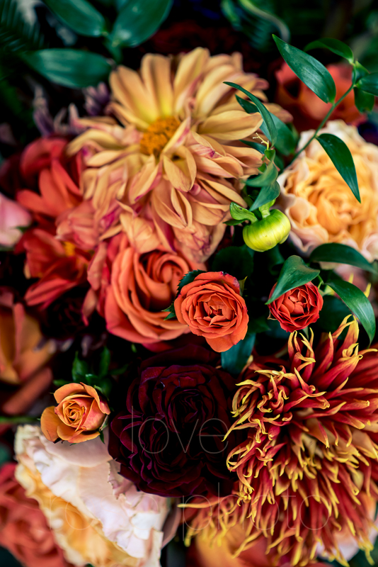 asheville wedding photographer best of the knot bride style rose photos social media share-4.jpg