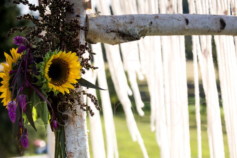 Asheville NC best wedding photographer farm bride angela kim gown wnc bridal-39.jpg