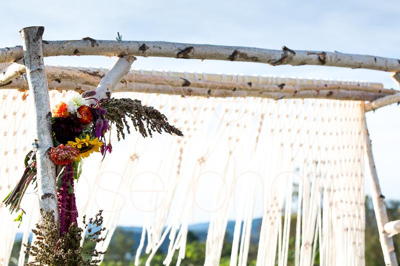 Asheville NC best wedding photographer farm bride angela kim gown wnc bridal-40.jpg