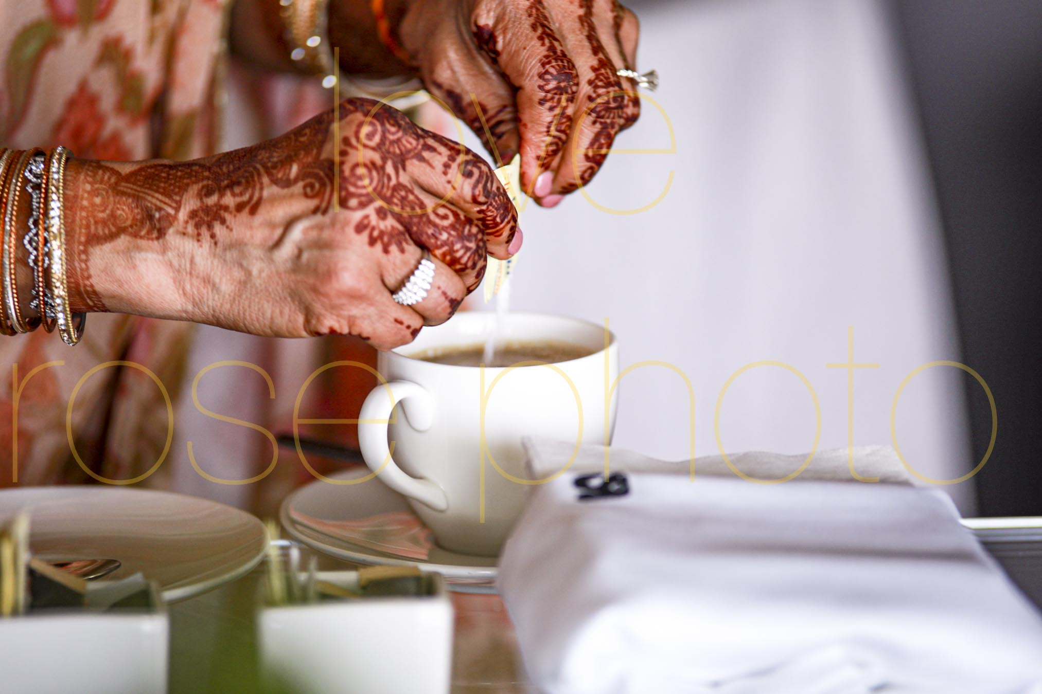 destination wedding photographer best of indian wed chicago asheville photographer-3212.jpg