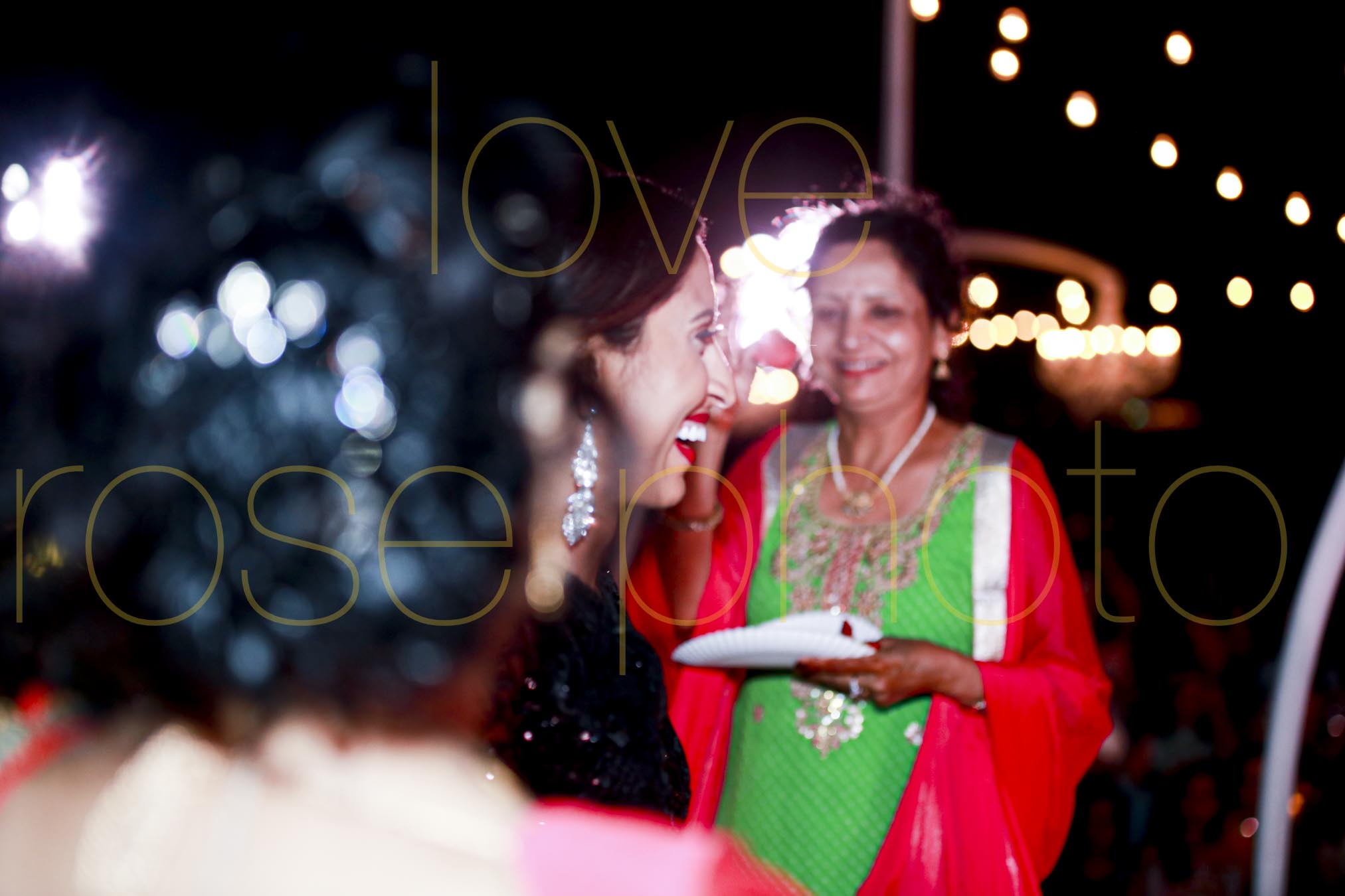 destination wedding photographer best of indian wed chicago asheville photographer-3901.jpg