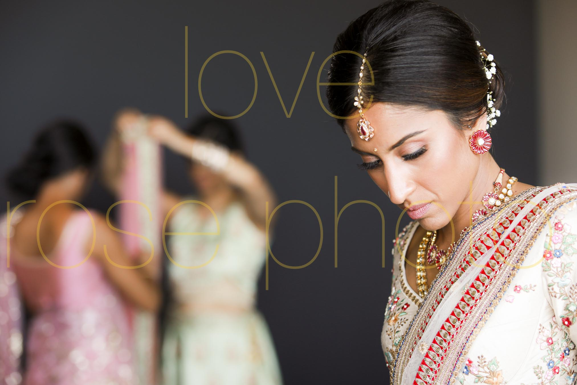 destination wedding photographer best of indian wed chicago asheville photographer-4182.jpg