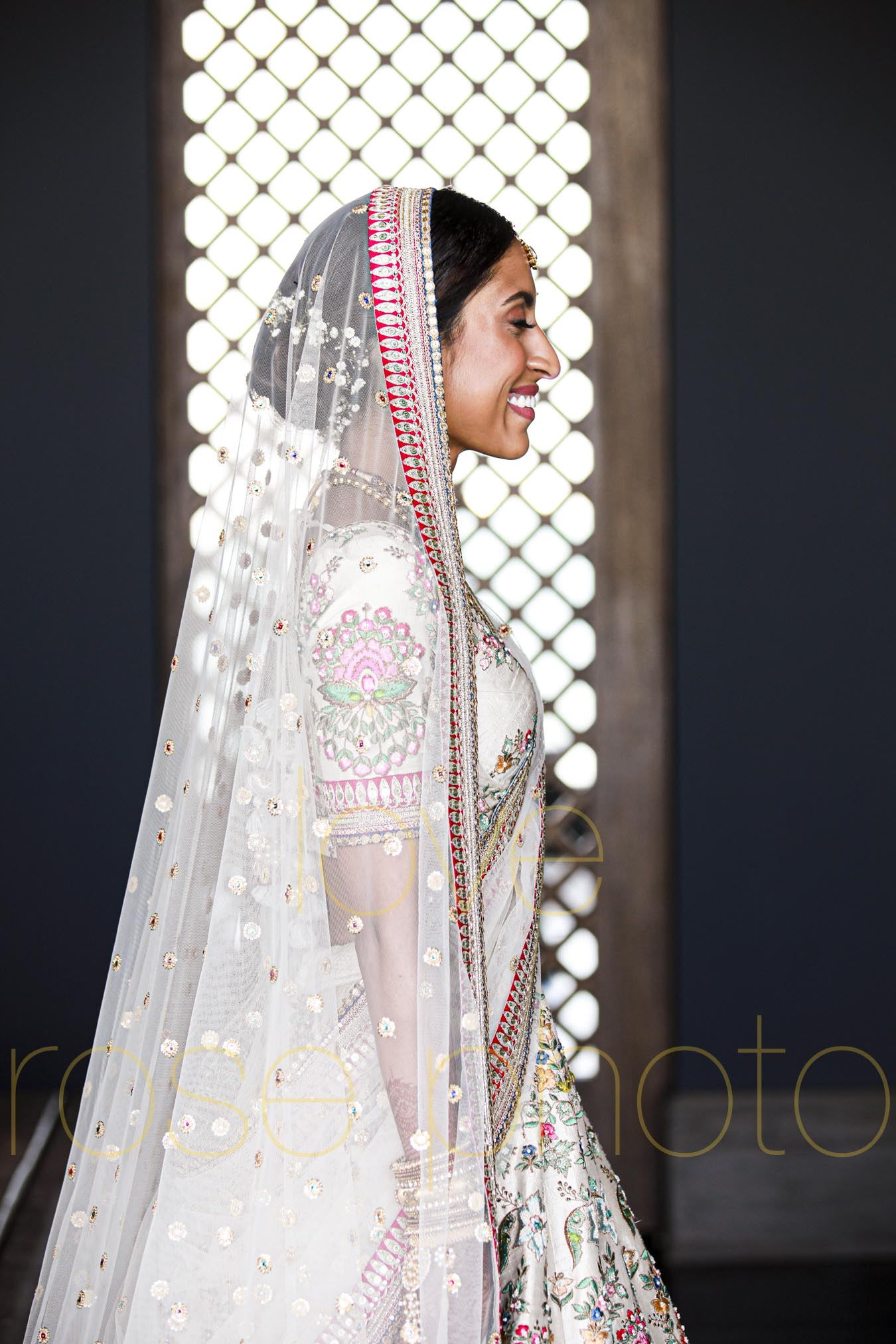 destination wedding photographer best of indian wed chicago asheville photographer-4213.jpg