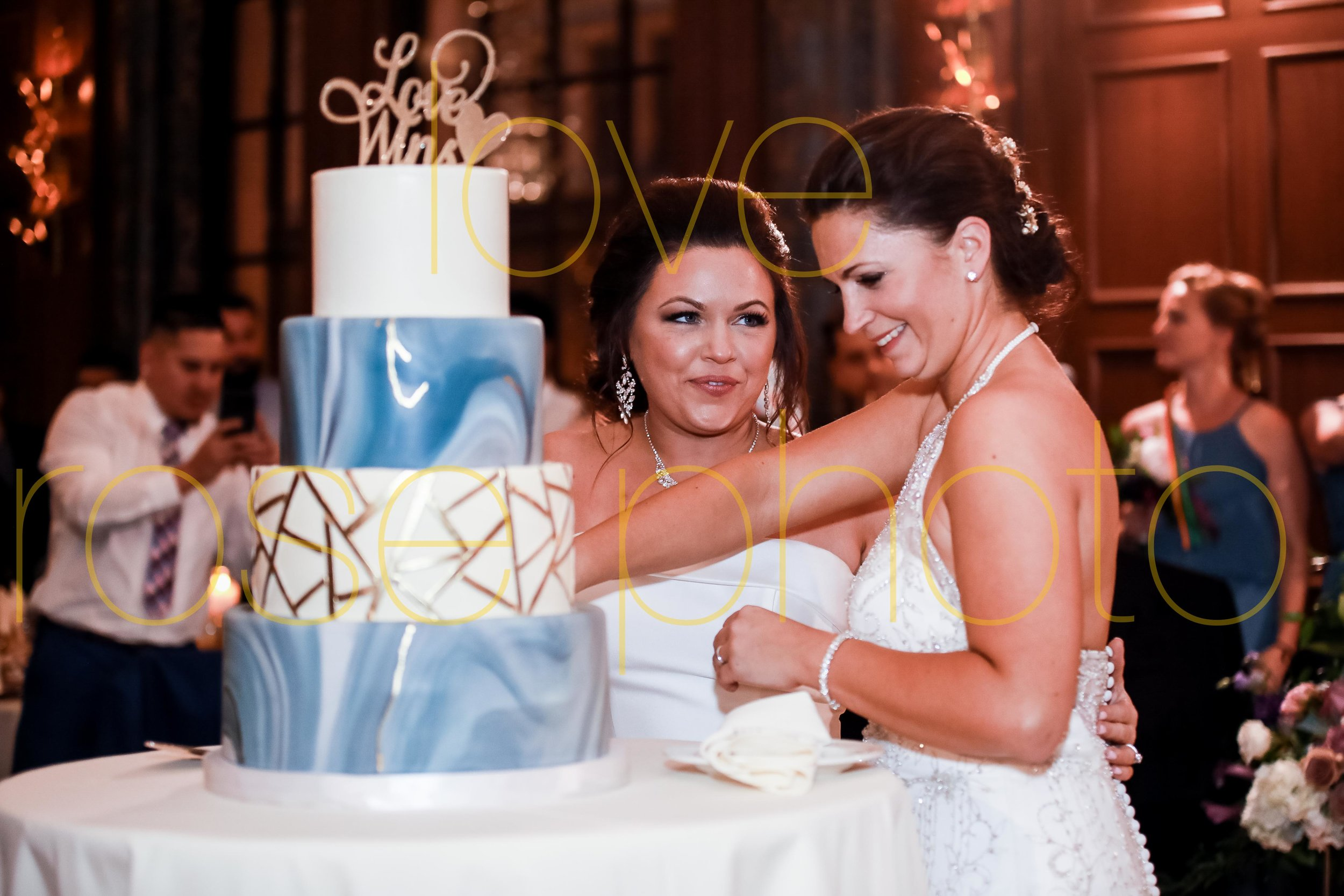 sophie + melissa love rose photo gay wedding chicago pride 2019 -77.jpg