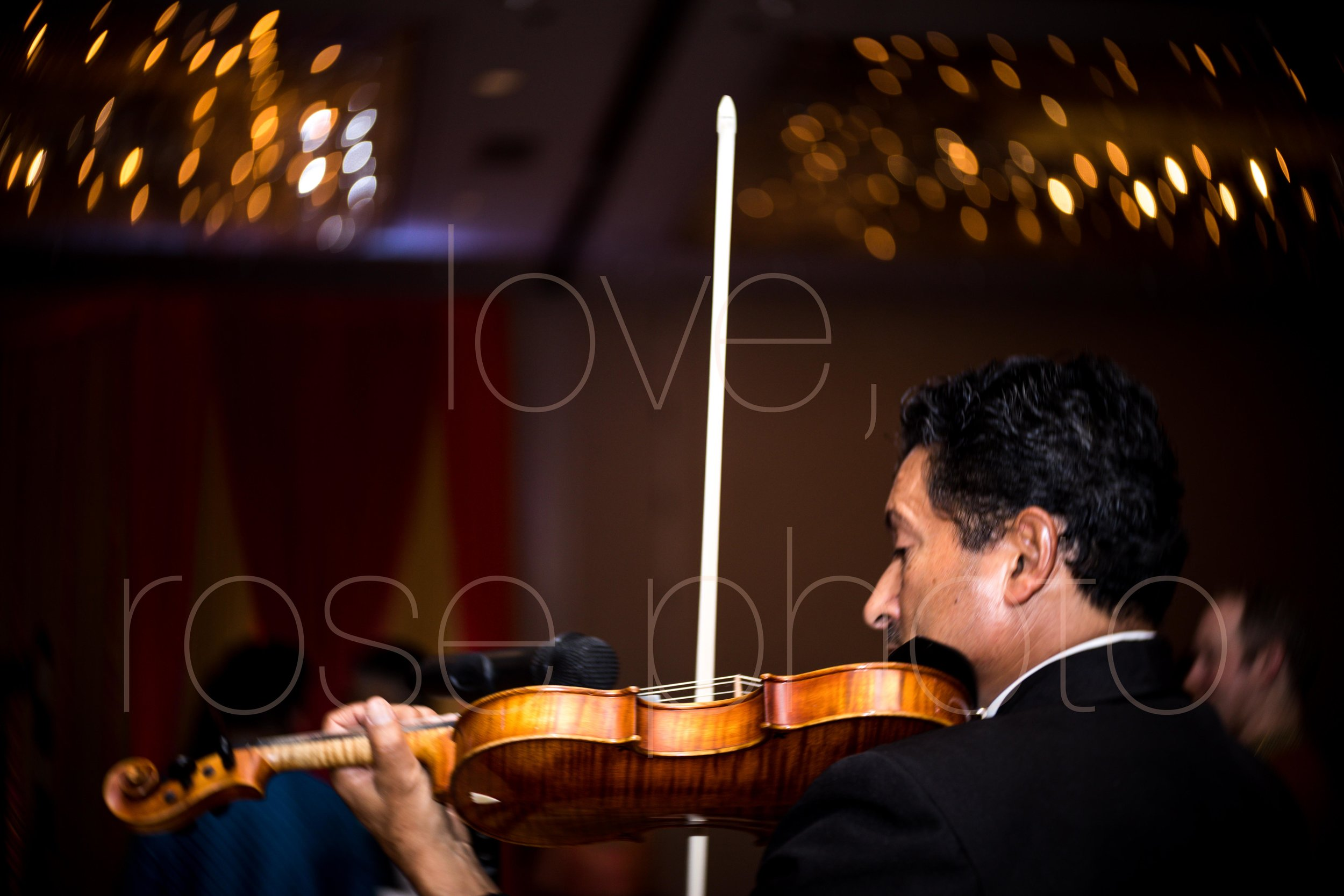 best chicago indian wedding photographer rose photo video collective-19.jpg
