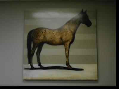 Horse 178 (Brian Hibbard)