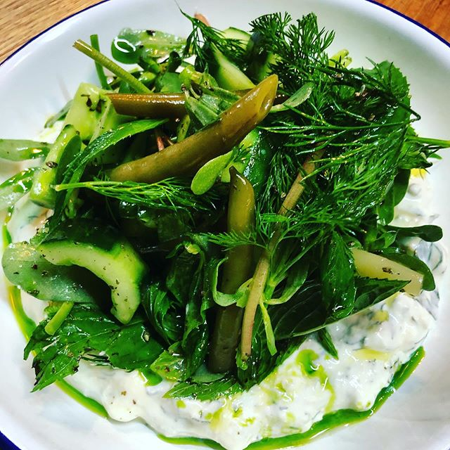 Tzatziki Salad, cucumber, purslane, whipped herbed feta, spiced pickled beans, large herbs, dill oil