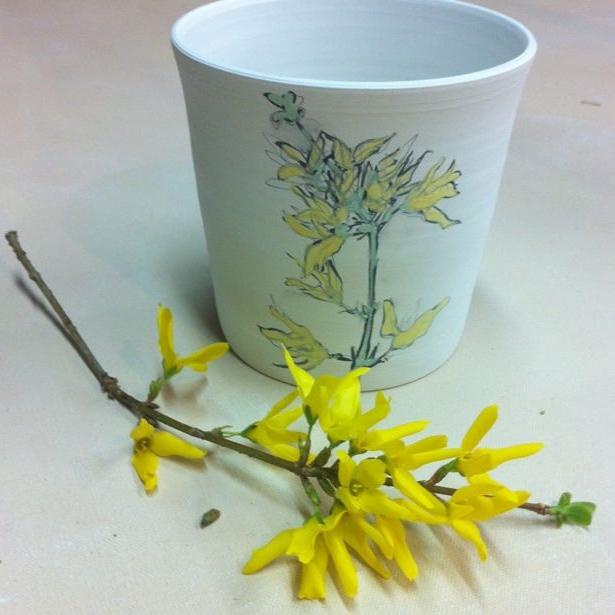 forsythia sprig sketch on porcelain cup