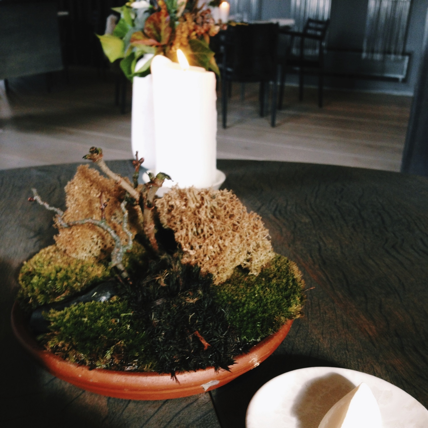 """""""Reindeer Moss"""" with mushroom dust and crème fraîche - favorite of the day!"""