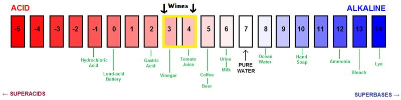 pH scale.jpg