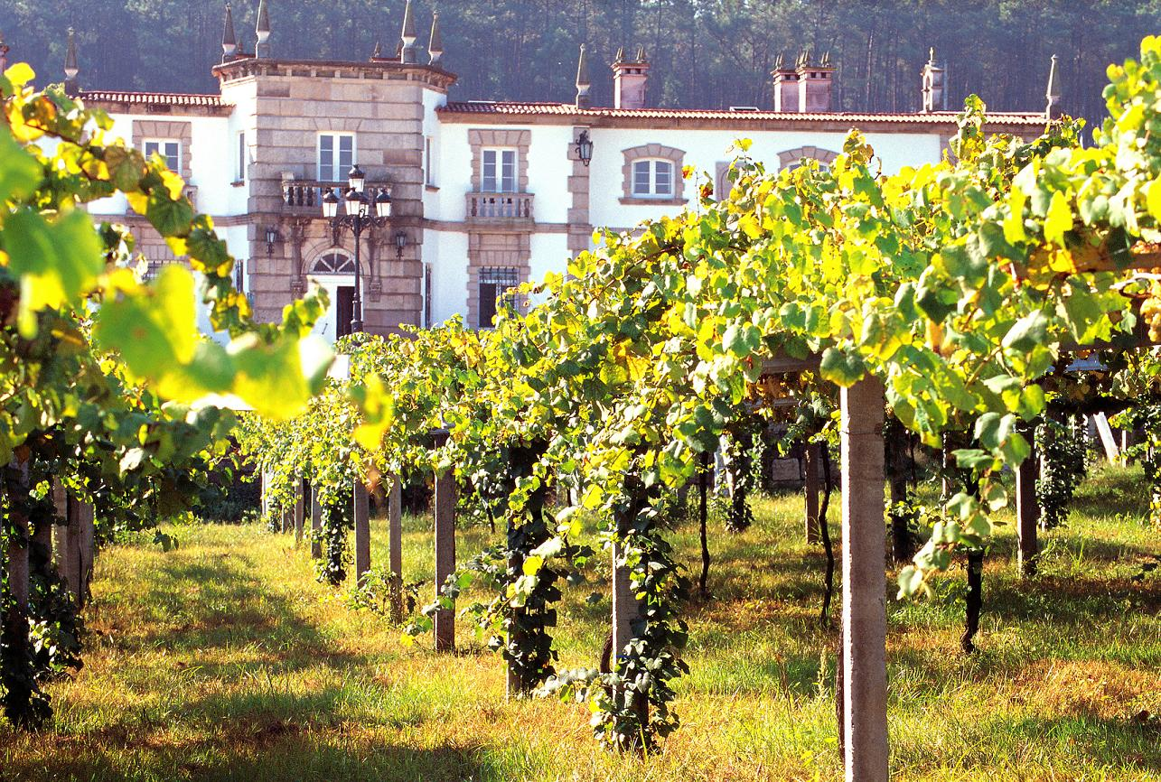 Rias Baixas. Photo courtesy of Wines from Spain.