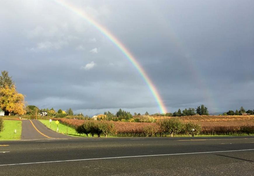 Photo courtesy of Emeritus Vineyards